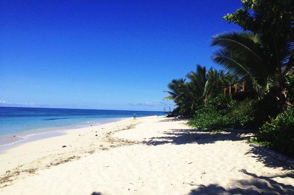 Черепаший остров Фиджи