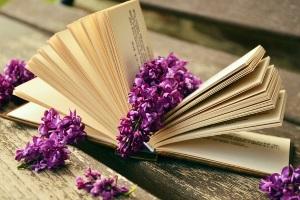 красивая книга с фотографиями